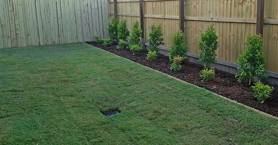 Arcadia Turf-arcadia-turf-supply-and-lay-wintergreen-capstone-estate.jpg